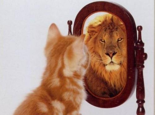 Вредные привычки, снижающие самооценку