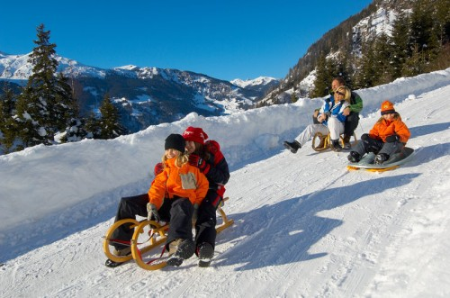 Зимние виды спорта - Скоростное катание на санках